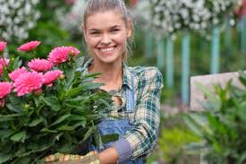 flower delivery services in charlotte