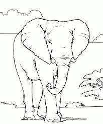 Small Picture 65 best Elephants Coloring Book images on Pinterest Coloring