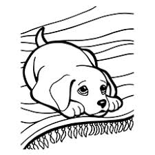 Dog coloring pages for adults luxury flip flops playful puppies. Top 30 Free Printable Puppy Coloring Pages Online