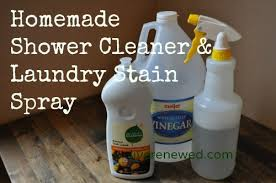 31 Days to Green Clean: Vinegar and Dishsoap for Shower Cleaner & Laundry  Stain Remover Green Cleaning