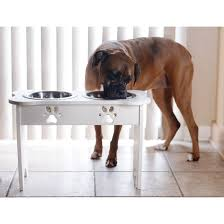 Indipets Eco-friendly Raised Pet Feeders - Free Shipping Today -  Overstock.com - 17678061