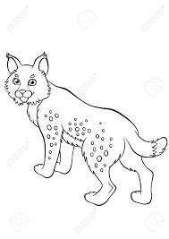 Vettoriale Disegni Da Colorare Animali Piccoli Stand Lynx Carino