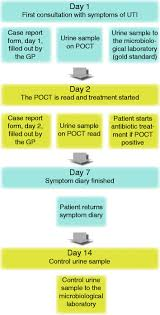 Flow Chart For Data Collection Poct Point Of Care Test