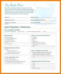 Different Birth Plan Options Birth Plan Notes Preferences Template Writing A Prinsesa Co
