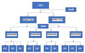 Project Management Organizational Structures Engineering