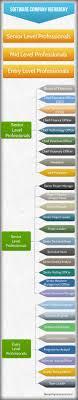 Tneb Designation Hierarchy Software Company Professionals Hierarchy Chart Hierarchy