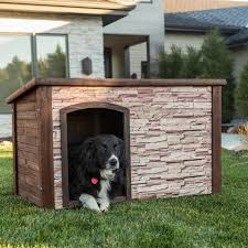 flat roof dog house plans flat roof dog house home design ideas and pictures 870 x