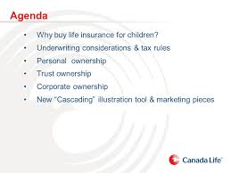What is life insurance and why business owners need it. Ownership Options For Juvenile Life Insurance Policies Sandra Napoletano Cpa Ca Tax Estate Planning Consultant Ontario Regional Marketing Centre Ppt Download