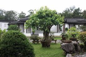 bonsai gardens. Chinese And Japanese Gardens: Garden - Bonsai Gardens N
