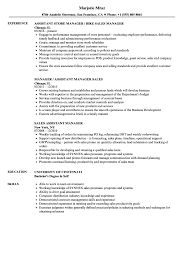 Resume Sample For Assistant Manager Sales Assistant Manager Resume Samples Velvet Jobs 13