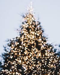 Everett Christmas Lights