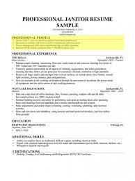 Sample Profile Summary For Resume Fascinating Resume Profile Summary Musiccityspiritsandcocktail