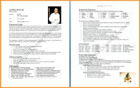 Resume Professional Bio Format Biodata Formatdoc Template Amazing ...