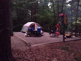 camping in the woods with a fire. Contemporary Camping Recommendations Camping Fire Pit Beautiful Flat Campsite In The  Woods With A Grill That Can On