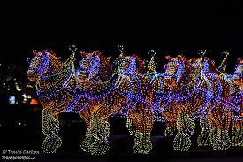 Budweiser Christmas Lights Budweiser Clydesdales In Snow Budweiser Clydesdales In