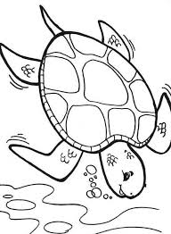 Small Picture Diving Deeper Sea Turtle Coloring Page Download Print Online