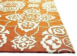 full size of decorating cakes ideas for es small spaces orange outdoor rug amazing rugs