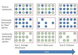 Species Diversity Definition Biodiversity And Ecosystem Stability Learn Science At Scitable