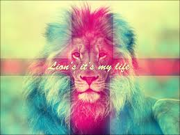 lion wallpaper abstract. colored lion wallpaper by handzgfx abstract