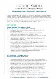 Business Intelligence Analyst Resume Samples QwikResume Stunning Business Intelligence Analyst Resume