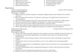 Writing Executive Summary Template Sample Letter For Immigration
