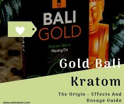 Gold Bali Kratom The Origin Effects And Dosage Guide