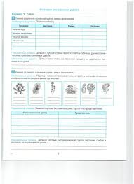 Рабочая программа по биологии класс ФГОС  Проверочная работа № 5 Итоговая контрольная работа