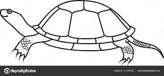 Cartoon Europese Vijver Schildpad Kleurplaat Stockvector