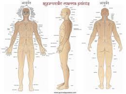 Marma Points Chart Ayurvedic Marma Point Self Massage Gingergarner Com