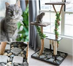 make a cat tree using real branches see how i made this beauty for about