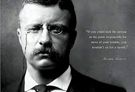 Amazon Theodore Teddy Roosevelt 40x40 Poster If You Could Kick Best Teddy Roosevelt Quote