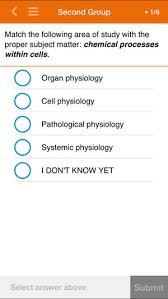 respiratory system essay grade 9 ppt