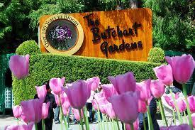 butchart gardens tours. Departure Time Butchart Gardens Tours