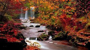 Autumn Nature Desktop Wallpapers - Top ...