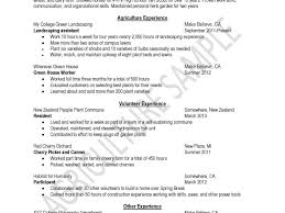 How To Write A Resume Sample Free Striking How To Prepare Resume Sample Making Good Tips On Writing 53