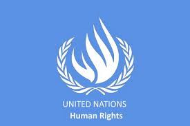 Image result for pics of Un human right logo
