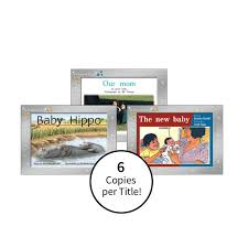 Rigby Guided Reading Levels Chart Rigby Pm Collection Platinum Edition Yellow Level Class Pack