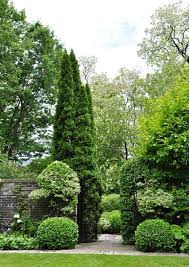 Small Picture 349 best Trees Evergreen shrubs Topiaries Formal Gardens