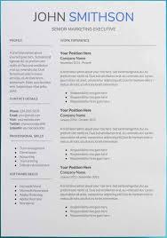 89 Resume Google Templates Google Docs Vorlagen Genial Templates