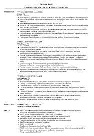Vp Relationship Manager Resume Samples Velvet Jobs