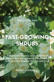 fast growing shrubs for instant garden