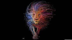 cat6 cable lion wallpaper