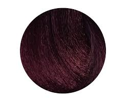 Chestnut Hair Colour Chart Synergy 5 52 Light Chestnut Mahogany Violet