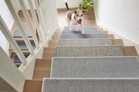 Hund ist nicht männlich sondern oberbegriff. Naturlicher Bodenbelag Spielt Immer Mit Teppich Mit Kaschmir Ziegenhaar Und Schurwolle Ist Wohngesund Und Praktisch Ratgeberbox Tipps Tricks Informationen