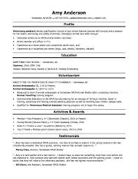 Sample College Application Resumes Resume For College Admissions ...