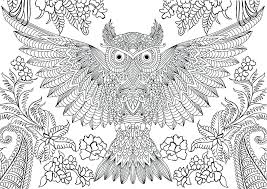 Hard Owl Coloring Pages Printable Owl Coloring Pages Owl Mandala