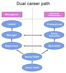 dual career path business inspiration paths dual career path business inspiration paths career and career development