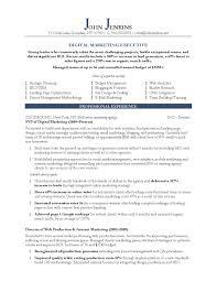 Marketing Executive Resume Sample Resume Sample For A Sales And Marketing Executive New Executive Cv 7