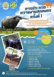 คณะทรัพยากรธรรมชาติและอุตสาหกรรมเกษตร | ขอเชิญชม การประกวดควายงามสกลนคร  ครั้งที่ 1 งานเกษตรแฟร์ นนทรีอีสาน ครั้งที่ 14