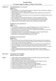 Tax Analyst Resume Sample Tax Analyst Senior Resume Samples Velvet Jobs 21